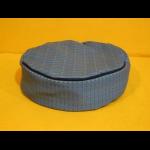 perna albastra 300